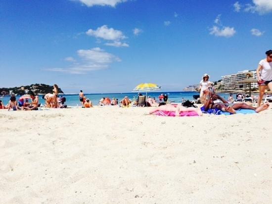 Holiday Park Apartments: the beach