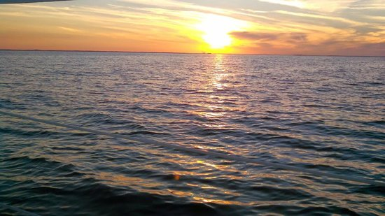 Blue Crab Chesapeake Charters : sunset on the bay