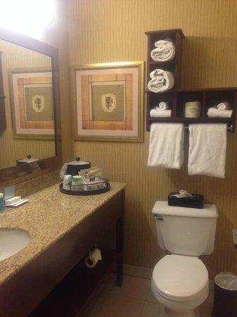 Hampton Inn Akron - Fairlawn: bathroom
