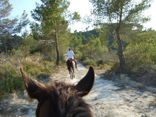 On the trail fotograf a de el valle de los caballos de - El valle de los caballos ...
