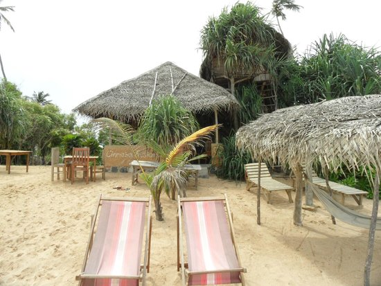 Cinnabar Resort: Как видит курорт море