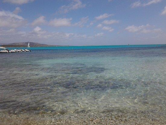 Club Esse Roccaruja : foto in spiaggia