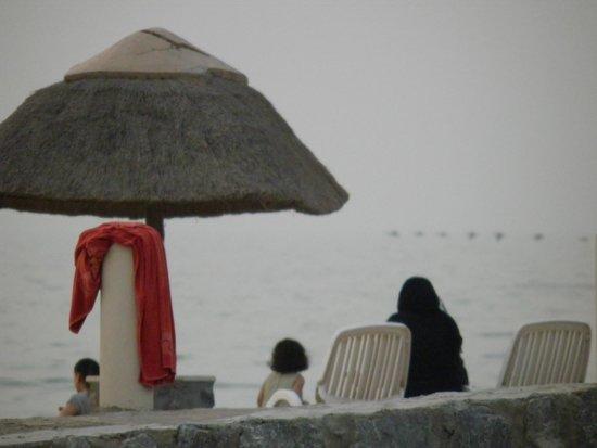 Cove Rotana Resort Ras Al Khaimah: Vogelschwarm über dem Meer...traumhaft