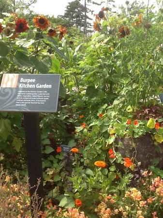 Coastal Maine Botanical Gardens: great ideas
