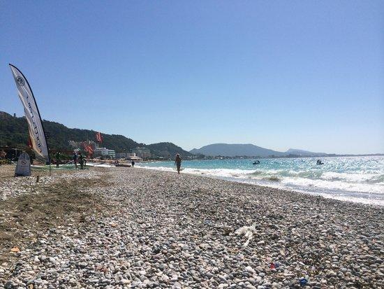 Smartline Cosmopolitan Hotel : The Beach