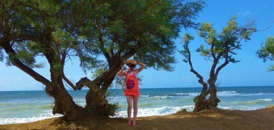 Fiesta Hotel Garden Beach: vue sur mer du jardin de l'hôtel