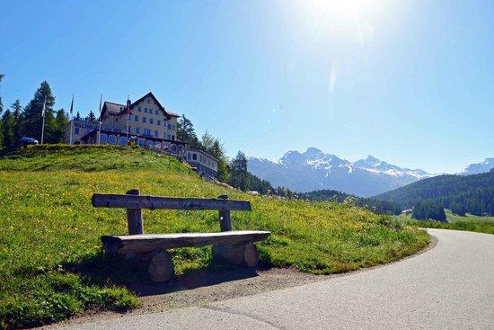 Hotel Waldhaus Am See: Hotel Sommer