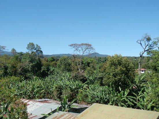 Kilimanjaro Mountain Resort: View from balcony of room