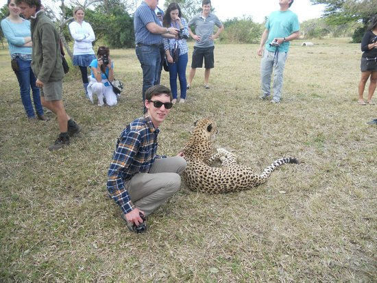 Emdoneni Cheetah project: petting the cheetah