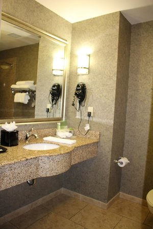 Holiday Inn Express Hotel & Suites Poteau : Sink