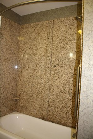 Holiday Inn Express Hotel & Suites Poteau : Shower