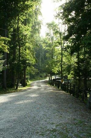 Travelers Rest / N Greenville KOA: Come visit us