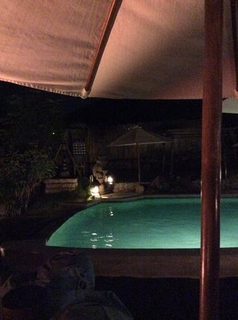 Milo's Home: the pool by night