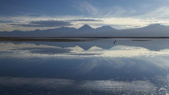 Laguna Tebinquinche: the perfect reflections