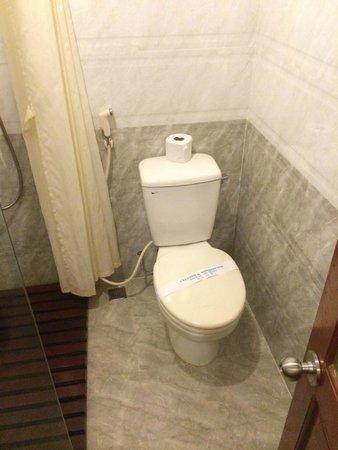 """Nhi Trung Hotel : toilettes pas """"niquel"""" en réalité.."""