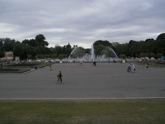 Gorkiy Central Park of Culture and Recreation : Вид на поющий фонтан
