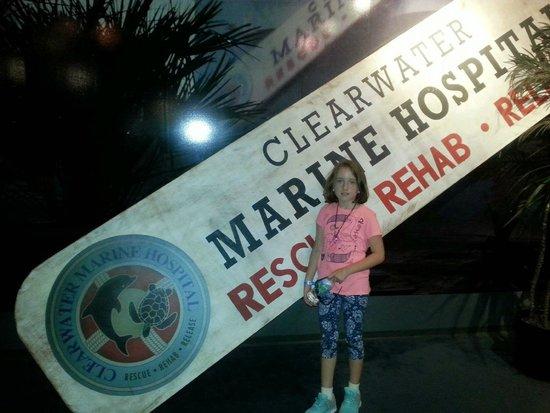 Clearwater Marine Aquarium: Winter 2