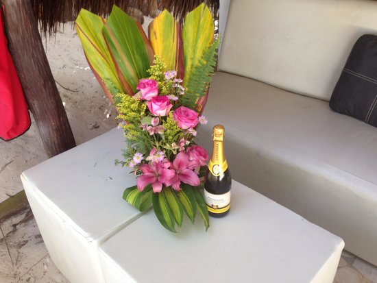 Playa Xcanan Cabanas Tulum: Wine and flowers left by Fabio for us