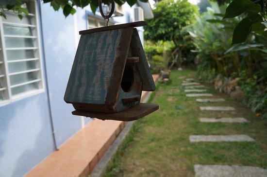 Foo Homestay: The bird house at the yard