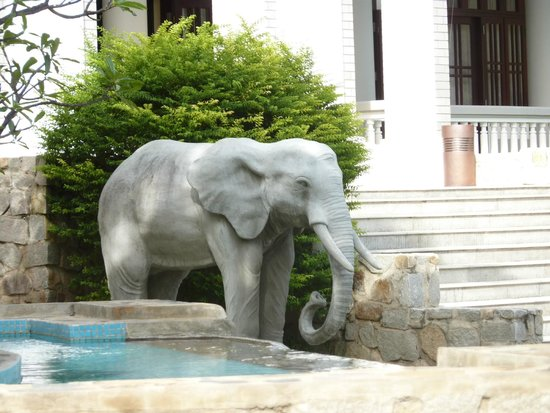 Amaryllis Resort & Spa : Great hotel