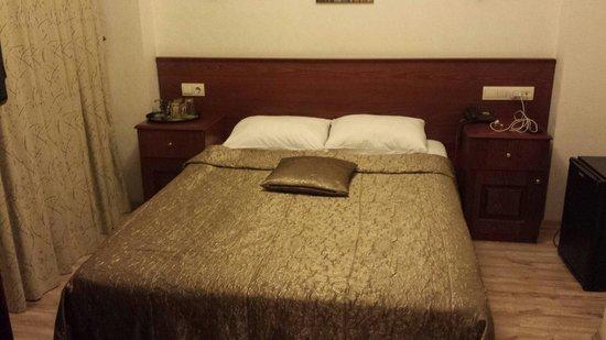 Sultanahmet Cesme Hotel : Room 203