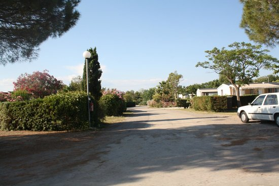 Siblu Villages - Le Lac des Reves: The holiday village