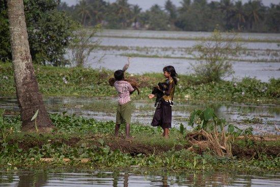 Kerala Backwaters: Local life