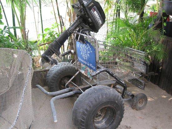 Villa del Palmar Beach Resort & Spa: El Oasis del Holi - dune buggy