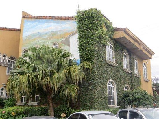Casa Conde Hotel & Suites: Ivy & Mural