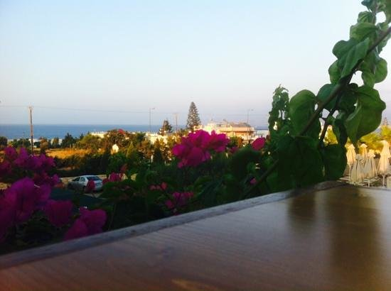 Grand Hotel Holiday Resort : view from the pool bar
