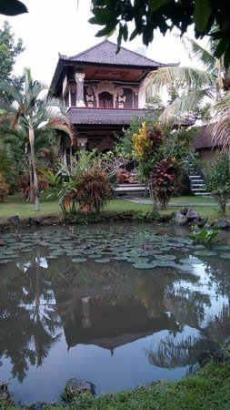 Swan Inn: Bungalow on kolam ikan