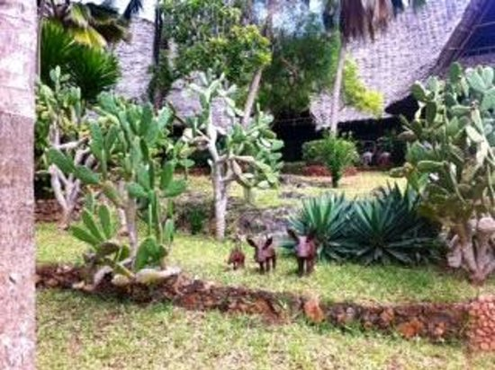 Ras Nungwi Beach Hotel: Grounds