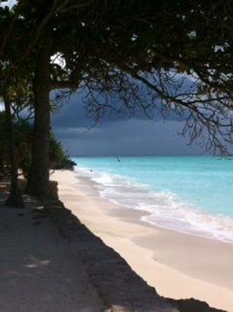 Ras Nungwi Beach Hotel : Beach view