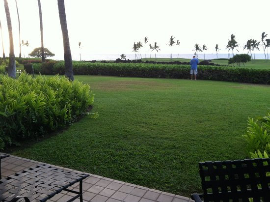 Mauna Lani Point: The view from A107. Perfect!!