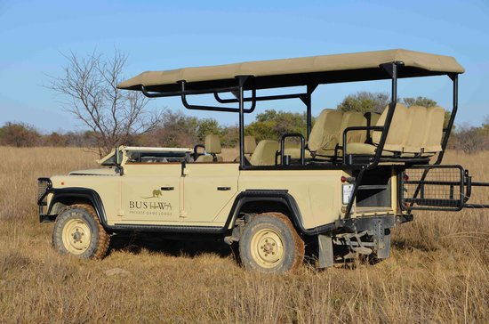 Bushwa Private Game Lodges: Safari