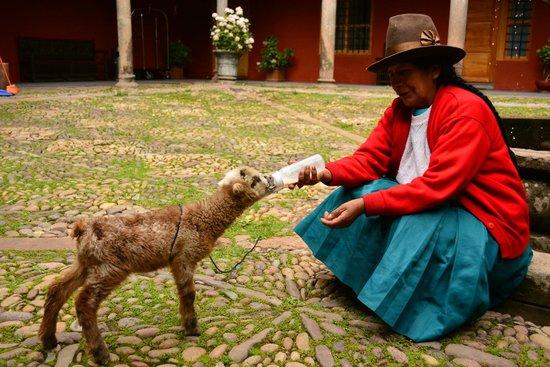 Hotel Costa Del Sol Ramada Cusco: Pátio Central