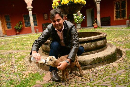 Hotel Costa Del Sol Ramada Cusco: Fonte ao fundo