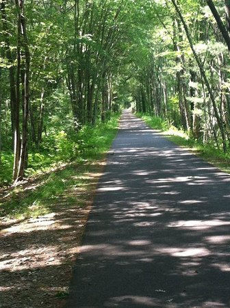 Image result for hills in andover ma