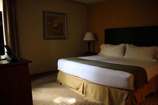 Holiday Inn Express Hotel & Suites-DFW North: King Bed Suite