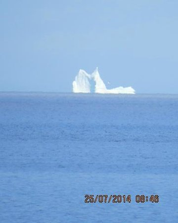 Butler's By The Sea Bed and Breakfast : iceberg off the shore at the B&B