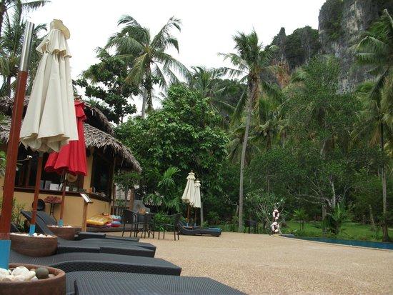 Ban Sainai Resort : Great saltwater pool