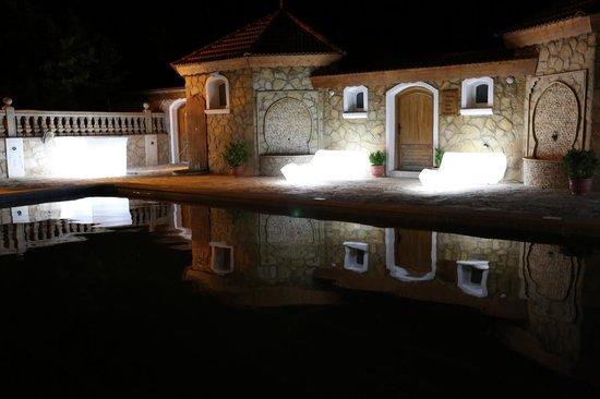 Le Palais des Cerisiers : reflets dans la piscine