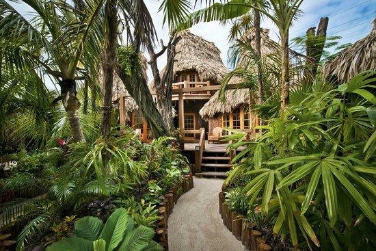 Ramon's Village Resort : Ramon's has a beautiful landscape.