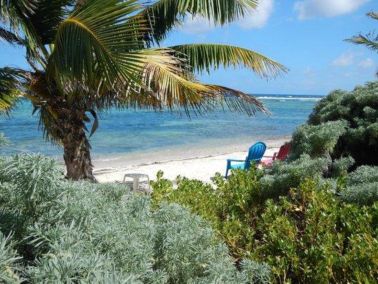 Turtle Nest Inn : the beach