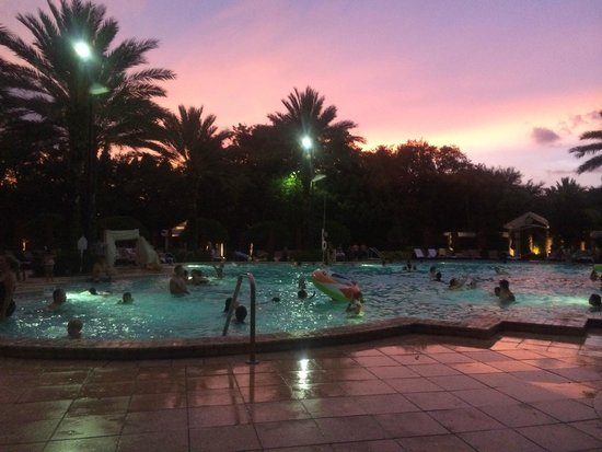 Renaissance Orlando at SeaWorld : This is the pool right before sunset.
