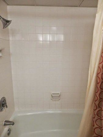 Los Angeles Airport Marriott : Shower/tub combo