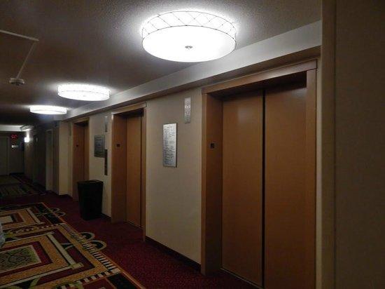 Los Angeles Airport Marriott: Elevator Area