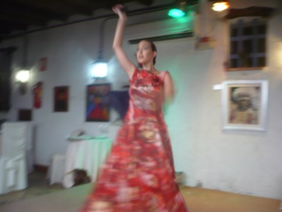 Restaurante La Herradura : Fantastic Dancer