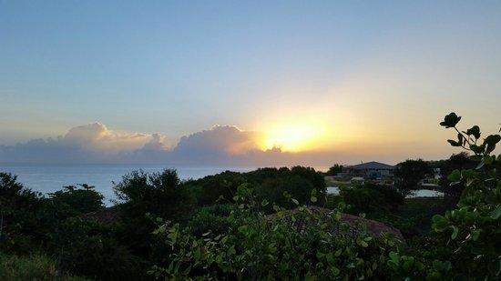 Royal Isabela: The sun!