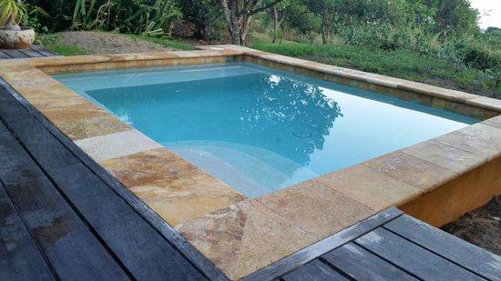 Royal Isabela: Personal pool (Jacuzzi)!